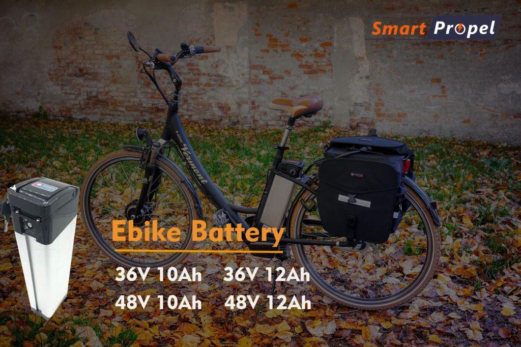 Ebike Model 1