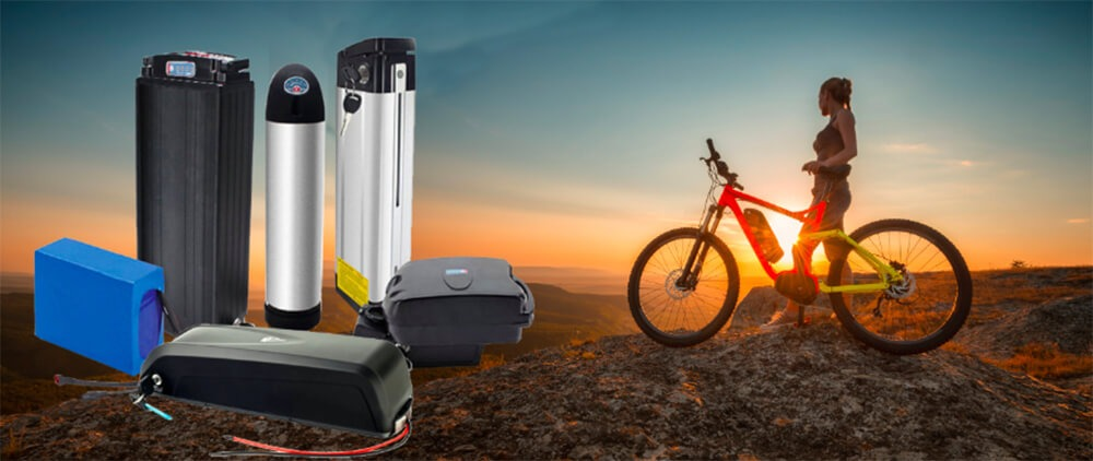 Different Types Electric Bike Lithium battery