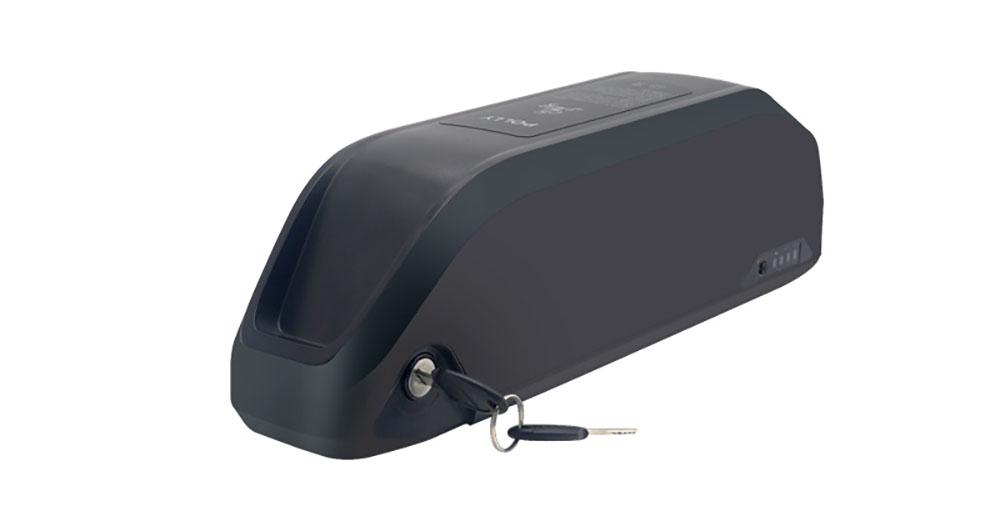 Parrot Type Ebike Battery