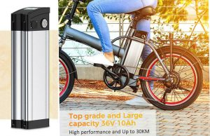Silver Fish Type Ebike Lithium Battery Application